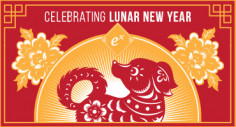 Celebrating Lunar New Year (Infographic)