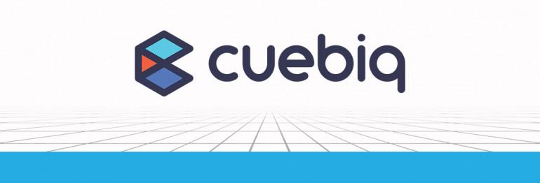 Partner Perspectives: Cuebiq