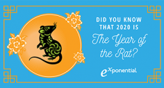 Celebrating Lunar New Year: The Year of the Rat (Infographic)