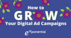 How to Grow Your Digital Ad Campaigns (Infographic)